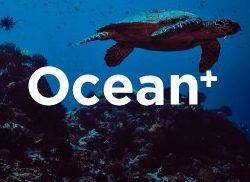 Ocean +
